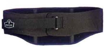Ergodyne 1500BS 1500 Back Support Belt